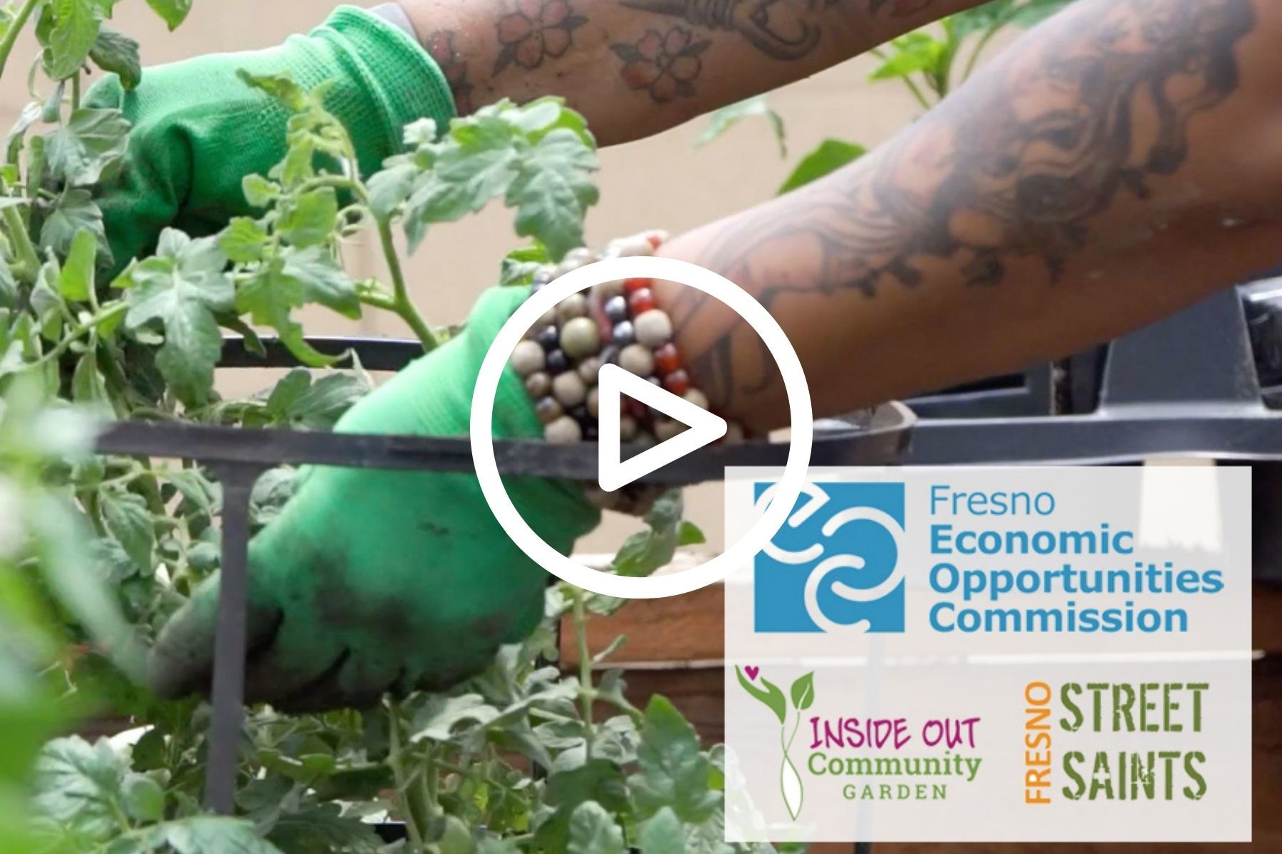 Image is a thumbnail of the Inside Out Community Garden video