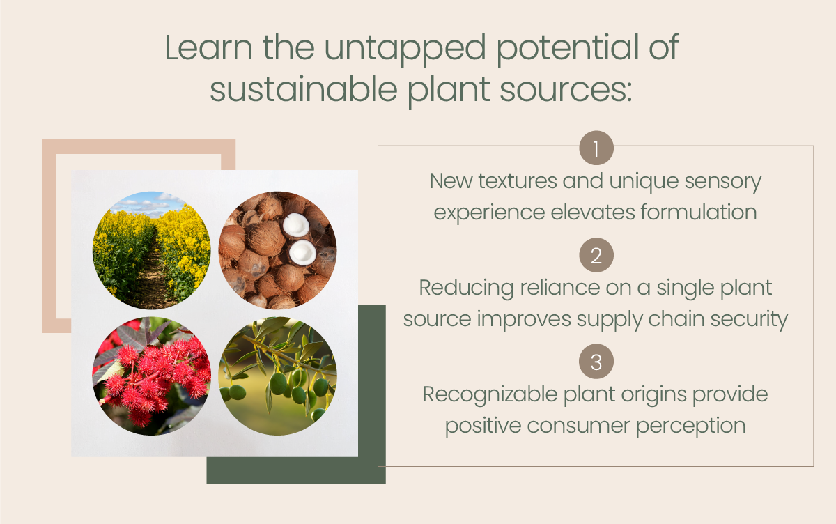Learn the untapped potential of sustainable plant sources