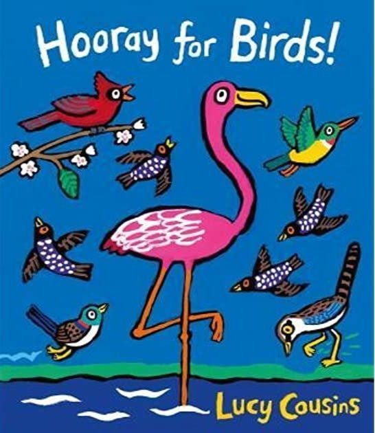 hooray for birds book cover image