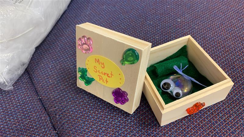 pet box craft Image