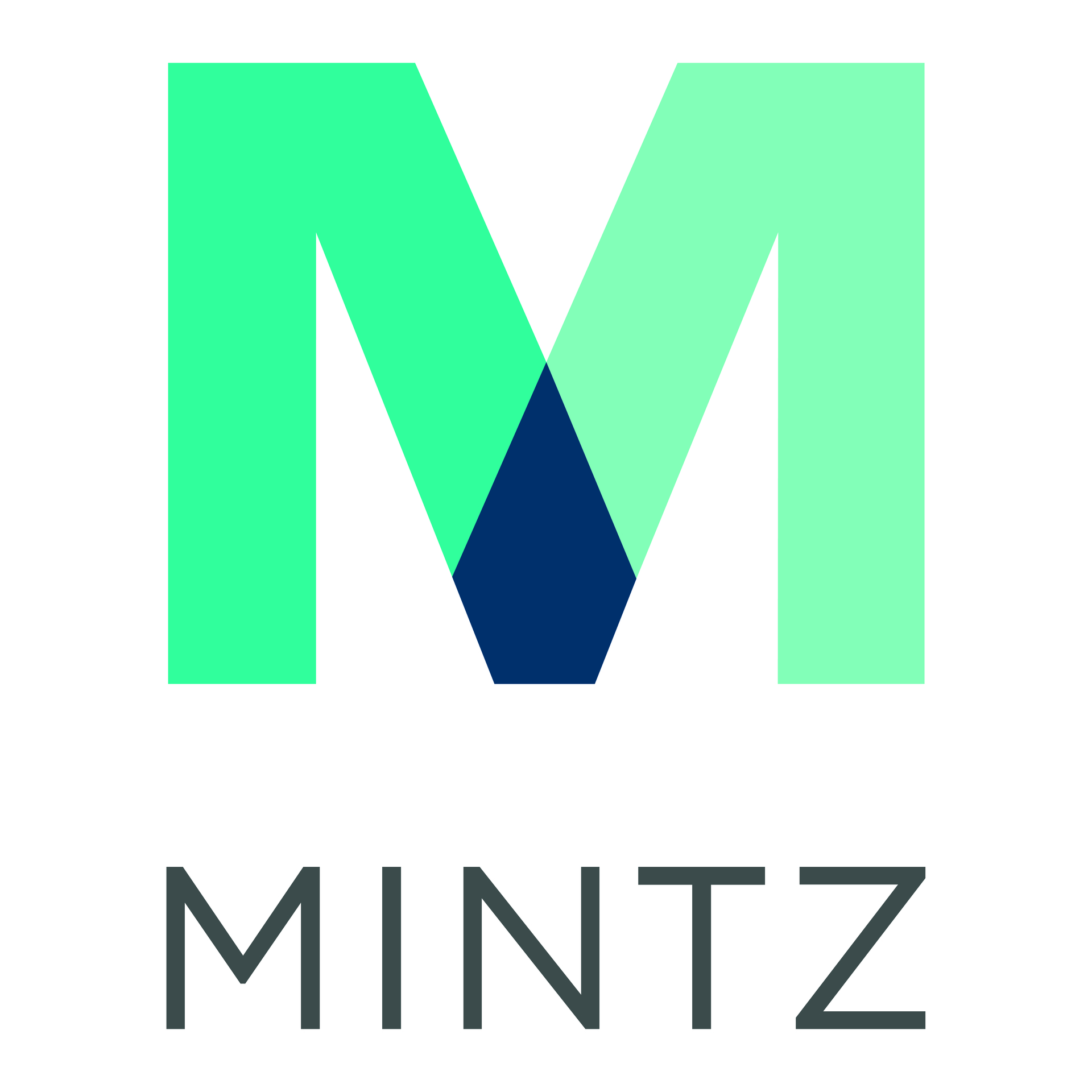 Mintz Law Firm Logo