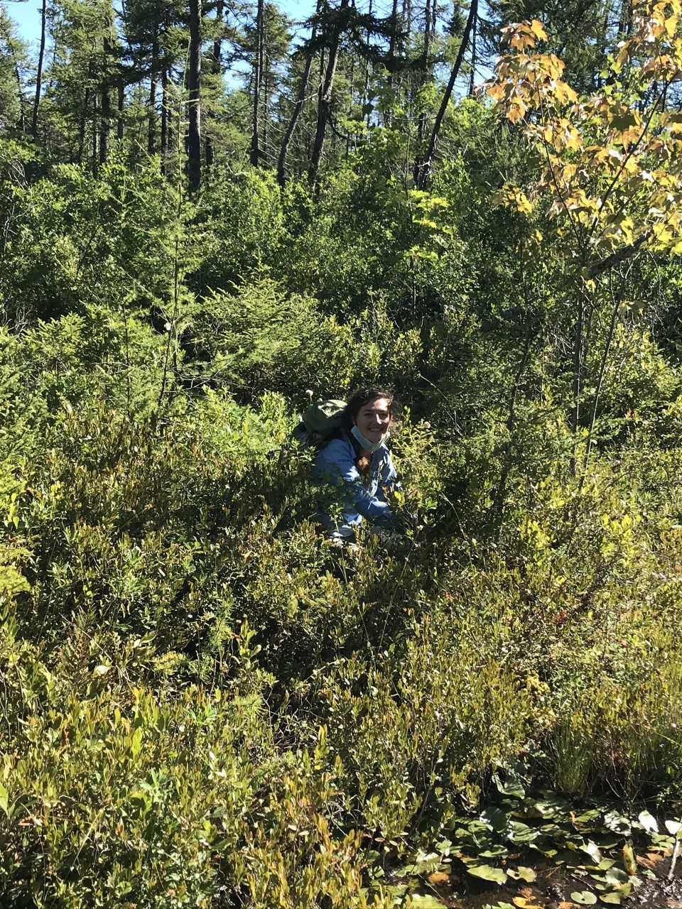 Anna DeGloria, 2020 botanical research intern, out in the field collecting samples.