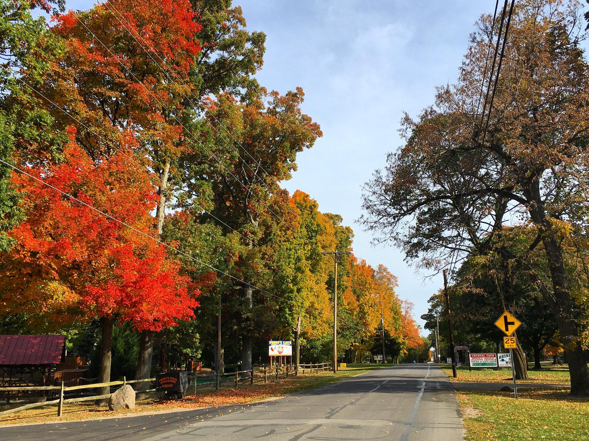 Catawba Ave Fall Colors at Put-in-Bay